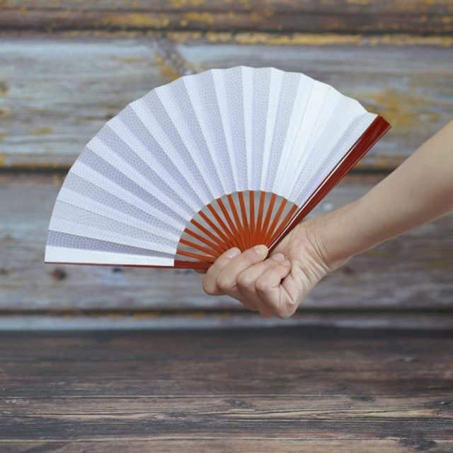 【江戸扇子】雲錦堂 深津扇子店 女持 鮫小紋 紫 溜塗