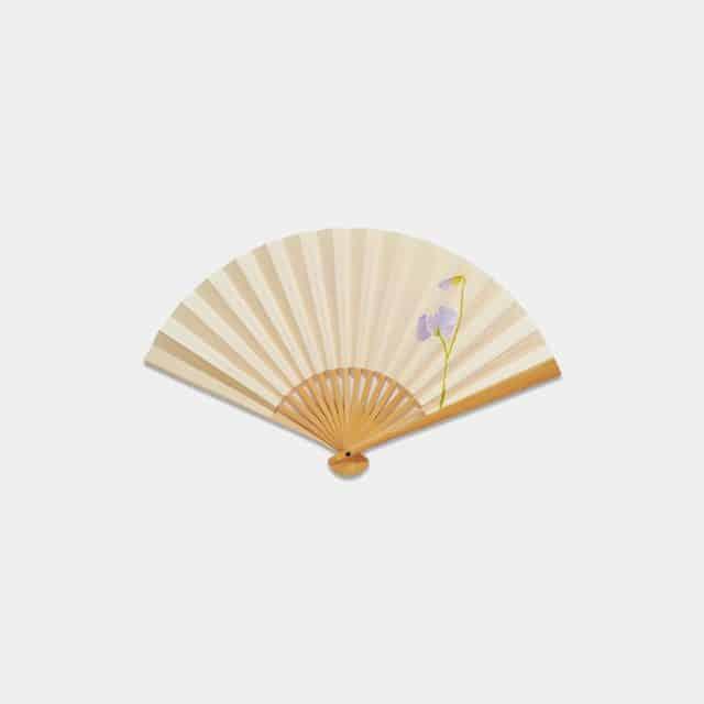 【江戸扇子】雲錦堂 深津扇子店 六寸五分 スイートピー 白竹