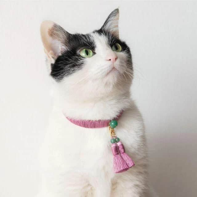 【京念珠】ねこのわ (中野伊助) 猫用ネックレス (首輪) HEIAN